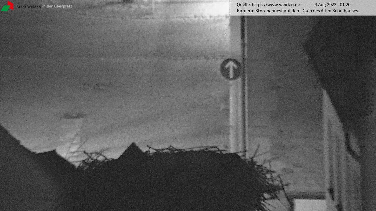 Storchennest auf dem Dach des Alten Schulhauses